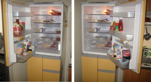 Japanese 2-Way Door Fridge Freezer
